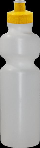 Imagem de Squeeze 750 ml Green Colors